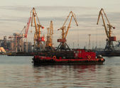 Cranes in the port and tug — Stock Photo