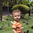 Stock Photo: Child in the park next to the birds