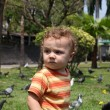 Child in the park next to the birds — Stock Photo #9499575