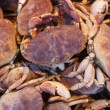 Crabs at the Market. — Stock Photo