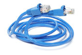 Close Up of Network Cable and Plugs — Stock Photo