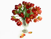 Bouquet of Red Tulips in a Vase — Stock Photo