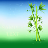 Vector abstract bamboo background. Eps10 — Stock Vector
