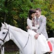 Bride and groom on a horse - Stock Photo