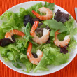 Salad with shrimps — Stock Photo