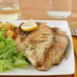 Fried fish with salad — Stock Photo #8052497