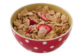 Cereals with dry red fruits — Stock Photo