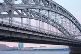 Bolsheohtinskij bridge, St. Petersburg, Russia. — Stock Photo