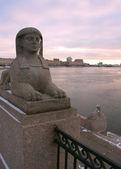Egyptian sphinx on quay of the Neva river. Saint-Petersburg, Rus — Stock Photo