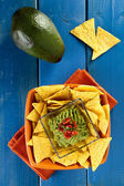 Nachos with guacamole — Stock Photo