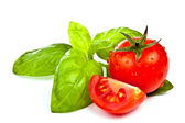 Tomato of Pachino and basil — Stock Photo
