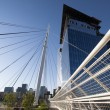 Denver Millennium Bridge — Stock Photo #10318248