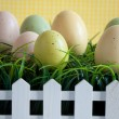 Easter — Stock Photo #8819927