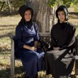 Stock Photo: Amish Girls