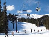 Skiën — Stockfoto