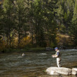 Fly Fisherman — Stock Photo #9607651