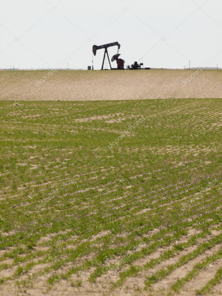 Oil pumpjack on agricultural field in Colorado.  Stock Photo #9769945
