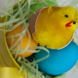 Easter Busket — Stock Photo