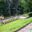 Warsaw citadel. Cemetery. Poland — Stock Photo #10228008