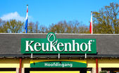 Keukenhof. Lisse, Netherlands — Stock Photo
