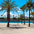 Palma de Majorca. Mediterranean. Spain - Stock Photo