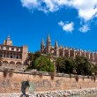 Cathedral of Majorca La seu - Stock Photo