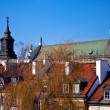 Roof  of the old city. Warsaw. Poland - Stock Photo