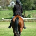 ������, ������: Horse rider