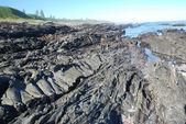 Stranden klippor — Stockfoto