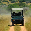 On safari in Africa — Stock Photo #10112528