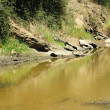 Stock Photo: Bushman's River, South Africa