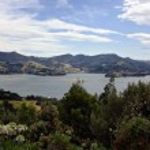 Coastal view of Dunedin Pennisula in New Zealand — Stock Photo #9179475