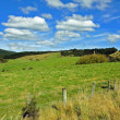 Mountain Landscape in New Zealand — Stock Photo #9194661