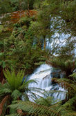 Triplet falls, Otway State Park, Australia — Stock Photo