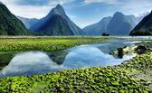 Mitre Peak, New Zealand — Stock Photo