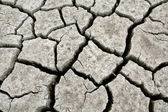 Drought Stricken Landscape — Stock Photo