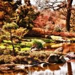ogrod japoński — Zdjęcie stockowe #10391762