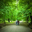Elderly couple walking in the spring park — Stock Photo