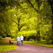 Elderly couple walking in spring park — Stock Photo #10651843