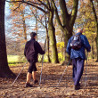 Stock Photo: In the park - Nordic walking