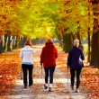 Three women in park - Nordic walking — Stock Photo #9085426
