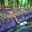 Dirty sewage ditch in city - Stock Photo