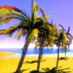 Hawaiian paradise — Stock Photo #9085728