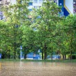 Flooded street — Stock Photo #9085746