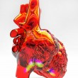 Model of artificial human heart — Stock Photo