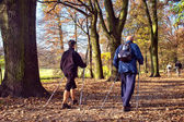 In the park - Nordic walking — Stock Photo