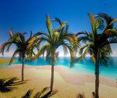 ハワイの楽園 — ストック写真
