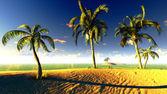 Paradis hawaïen — Photo