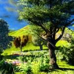 Rural scenery — Stock Photo #9624911