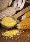 Maize flour — Stock Photo